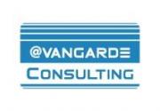 Avangarde consulting srl